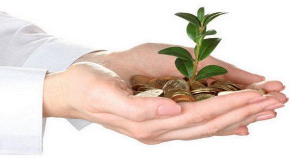 La venta de productos ecológicos como una oportunidad de negocio rentable